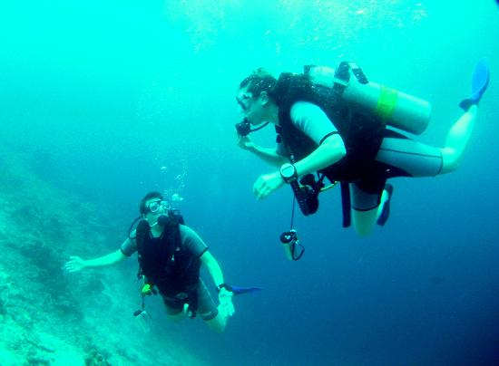 Euro Divers at Kurumba Maldives: Diving for all levels