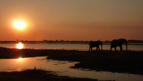 Elephant Valley Lodge: An African sunset- at Chobe