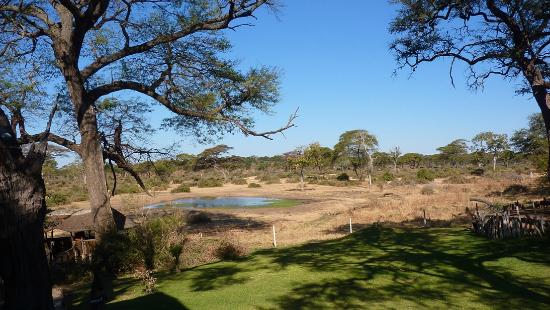 ‪‪Elephant Valley Lodge‬: View of Elephant Valley Lodge waterhole, with bird hide on bottom left and boma on the right.