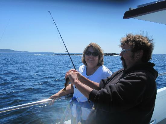 islander half day fishing trips bar harbor all you