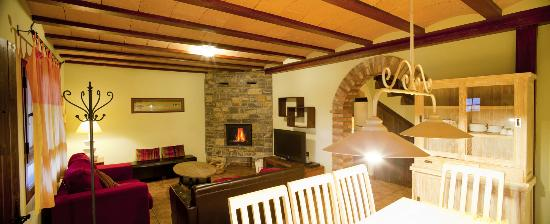 Casas Rurales Ordesa: Salon casa Tulipanes
