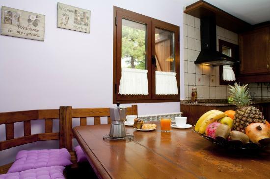 Casas Rurales Ordesa: Cocina casa Roble