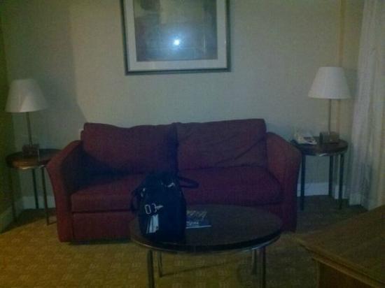 Garden Inn & Suites: couch in sitting area