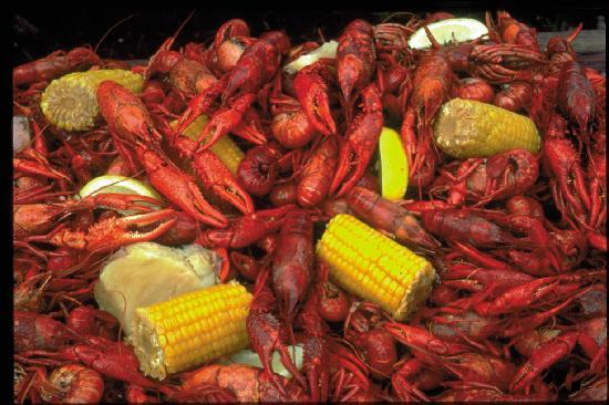 Baton Rouge, LA: A Louisiana delicacy...boiled crawfish!