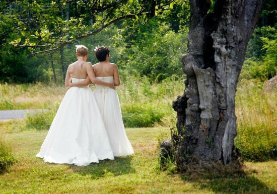 Ashokan Dreams B&B: our wedding in the meadow