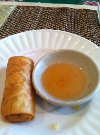 Thai-gour Cafe: Spring Roll