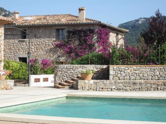 Cases de Ca's Garriguer: Jardin vu de la piscine