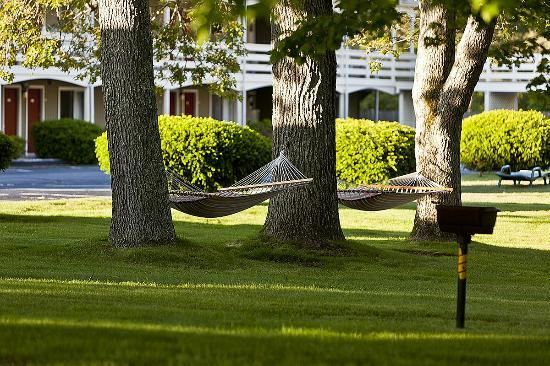 Ocean Park Inn Cape Cod: Relax in one of our hammocks!