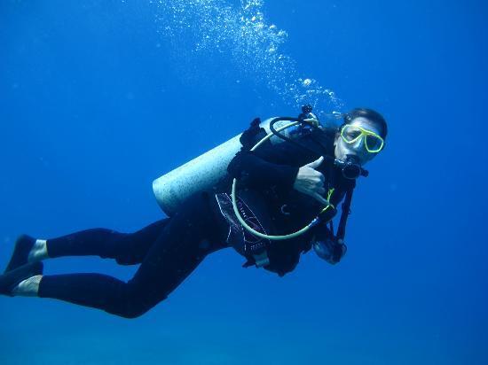 Can Do Dive Co.: So fun!