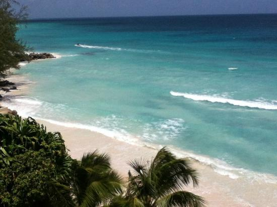Mistle Cove: Beach