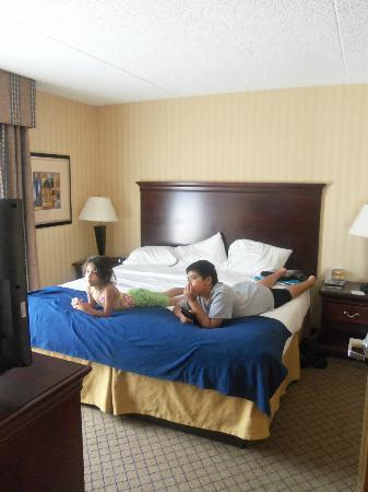 Holiday Inn Express Hotel & Suites West Long Branch: bedroom w/kingsized bed