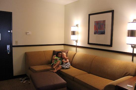 حياة بليس نورث شارلستون: they loved the couch 