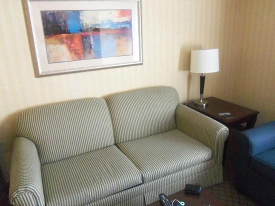 Holiday Inn Express Hotel & Suites West Long Branch: pull out couch