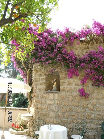 Antiche Mura Hotel: garden area