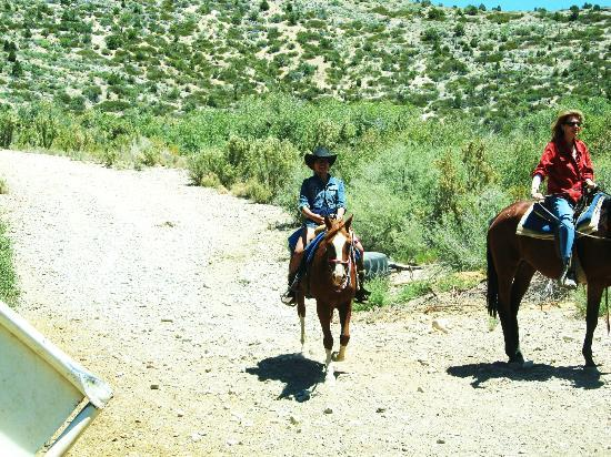 Mount Charleston Riding Stable: My Wife finishing up the ride