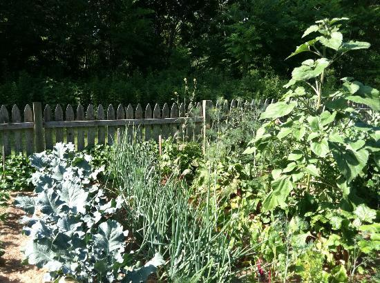 River Bend Farm: garden