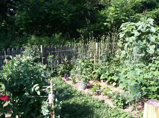 River Bend Farm: more vegetable garden