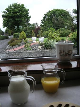 Philmar House: Gardens from breakfast room