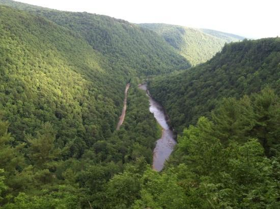 Pine Creek Gorge: view of canyon from rim overlook