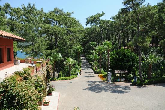TUI Sensimar Marmaris Imperial Hotel: view of driveway