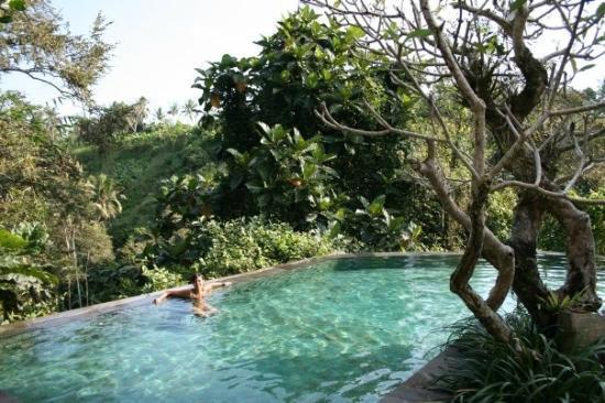 Natura Resort and Spa : Piscina