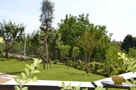 Il giardino picture of b b tre tornesi martina franca tripadvisor - Giardino degli aranci martina franca ...