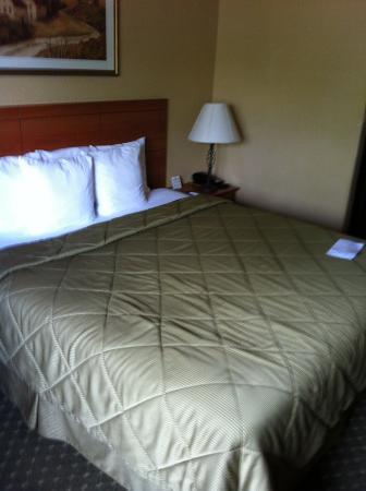 Comfort Inn & Suites Ukiah: The bed