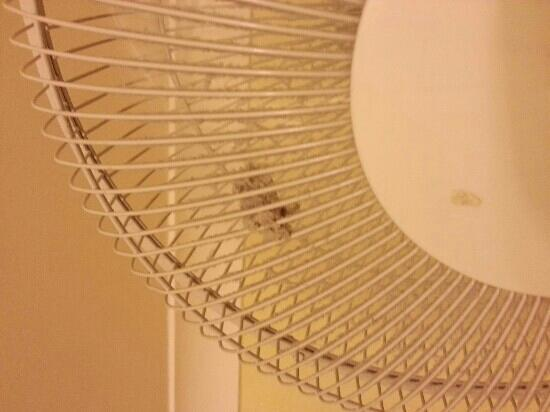 Melville Hall Hotel: Dusty fan.