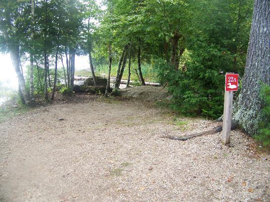 Balsam Cove Campground: Clean and beautiful camp site