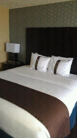 Holiday Inn Pointe Claire Montreal Airport: le lit