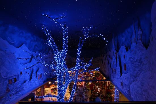 Christmas Place : View from above....7-4-2012