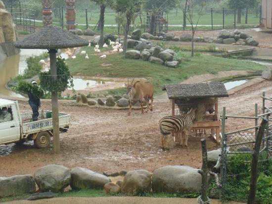 Leofoo Resort Guanshi: view from Lobby balcony