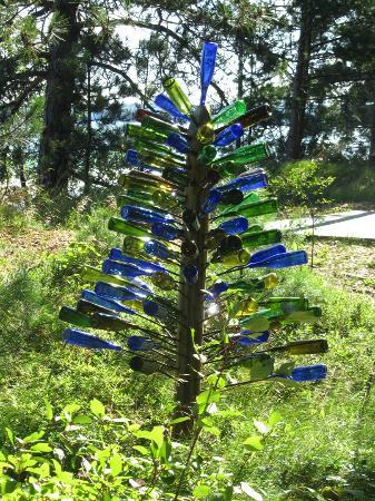Pinewood Lodge B&B : Fun bottle tree found on our walk on the property