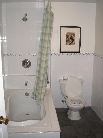 Europa Inn & Restaurant: bathroom from door
