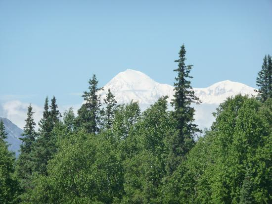Denali Fireside Cabins & Suites: View of Mt McKinley from nearby