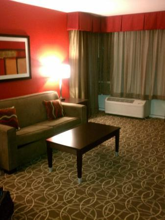 Holiday Inn - Hamilton Place: Livingroom 2