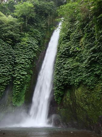 Puri Lumbung Cottages: Red Coral Waterfall