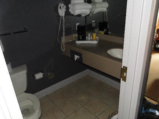 Land O Lakes, ฟลอริด้า: bathroom