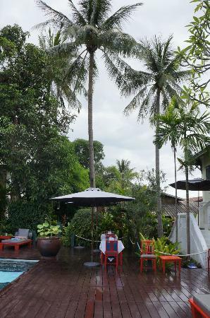 Villa Maly: Pool