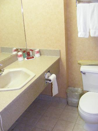Ramada Canmore: Bathroom counter with free toiletries