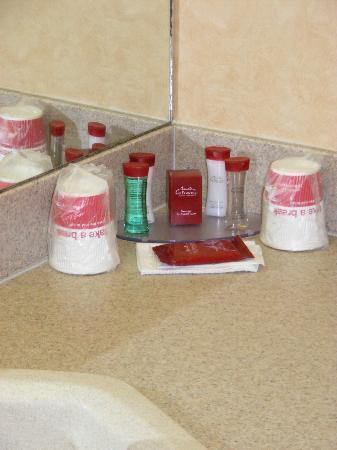 Ramada Canmore: Soap, Shampoo, etc.