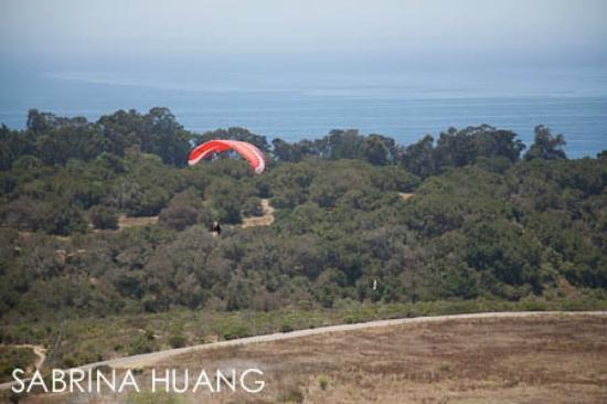 Elings Park: paragliding