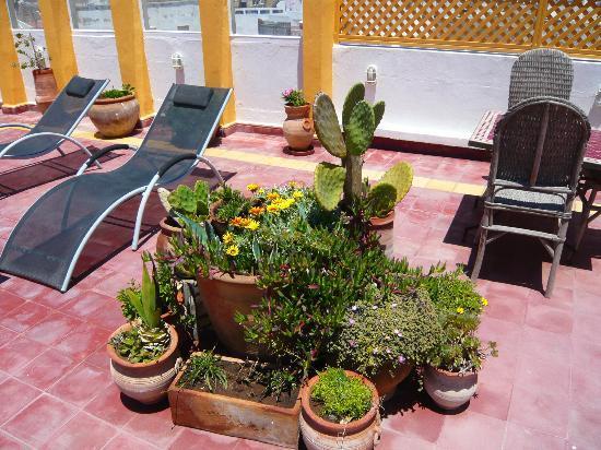 Dar Liouba: terrasse