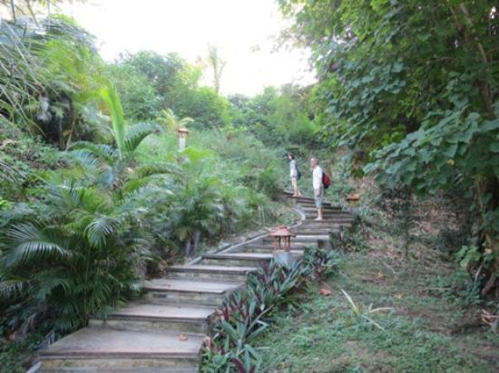 Living Colours Dive Resort: you must climb a little bit steps to get to your bungalow