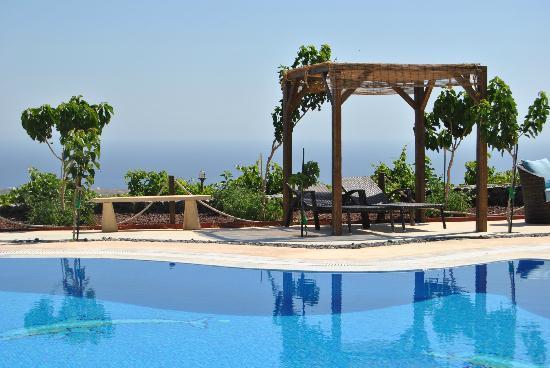 Santorini Mesotopos : Piscina
