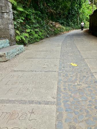 The Samara: The charming road from the villa to Ubud town. Carved with words that are amusing & good for mus