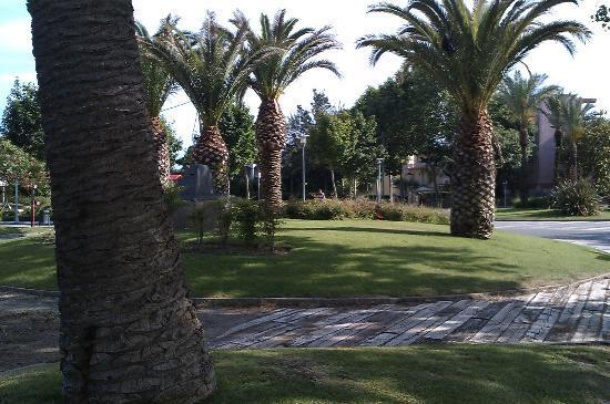MedPlaya Hotel Monterrey: jardin public
