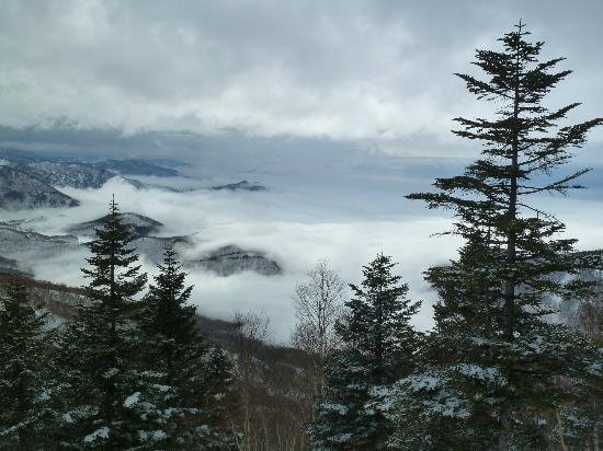 Shiga Kogen Prince Hotel: View from the top