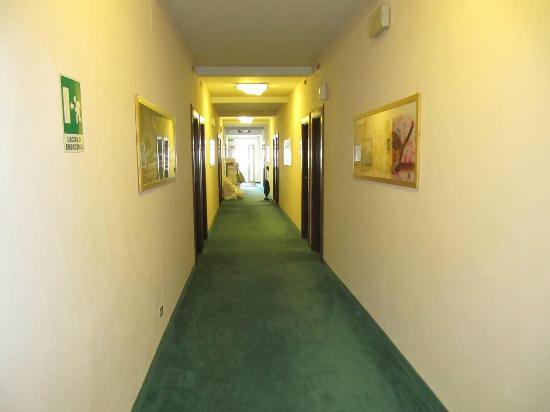 Park Hotel California: The hollway