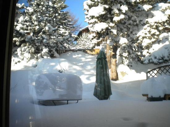 Chalet Pomme de Pin: jardin du chalet sous la neige